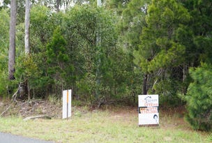 Lot 2 Wilkinson Rd, Tuan, Qld 4650