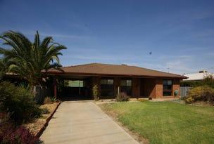 20 Norris Court, Deniliquin, NSW 2710