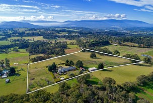 Wandin East, address available on request