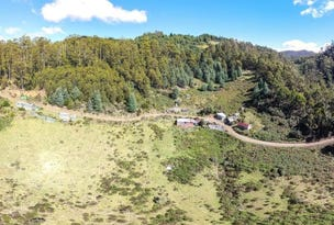 300 Kaoota Road, Kaoota, Tas 7150