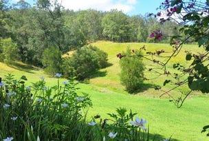 439 Upper Buckrabendinni Road, Buckra Bendinni, NSW 2449