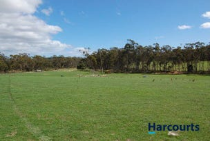 Lot 1 Red Road, Pipers River, Tas 7252