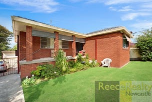 92 King Street, Shortland, NSW 2307