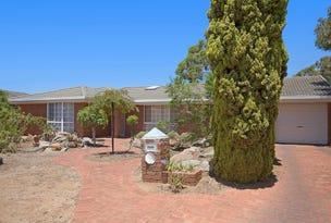 19 Carnation Court, Parafield Gardens, SA 5107