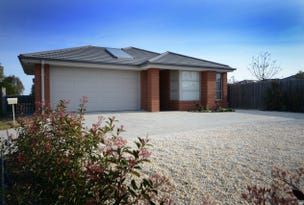 8 Lowe Court, Eastwood, Vic 3875