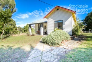1405 Foster-Mirboo Road, Dollar, Vic 3871