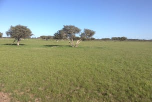 Lot 81 Mitchell Rd, Benger, WA 6223