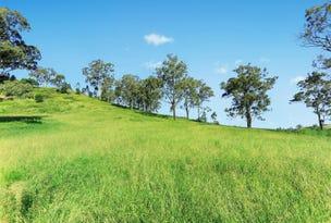 Lot 10 515 Spring Creek Road, Mount Hunter, NSW 2570