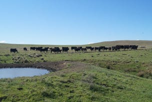 """""""Willow End East"""" Carlaminda Rd, Cooma, NSW 2630"""