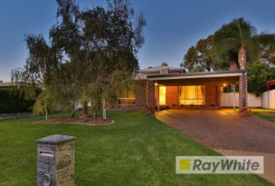 25 Wilkie Drive, Irymple, Vic 3498