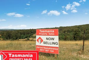 Lot 2, 103 Castle, Tarleton, Tas 7310