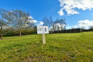 Lot 1 Cruickshank Court, Colac, Vic 3250