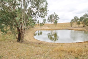 655 Olympic Hwy, Young, NSW 2594