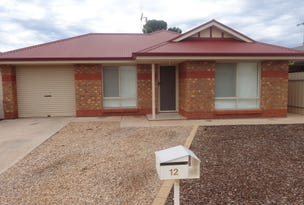 12 Anesbury Street, Whyalla Norrie, SA 5608
