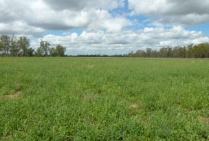 240 Guyatts, Branch Creek, Qld 4625