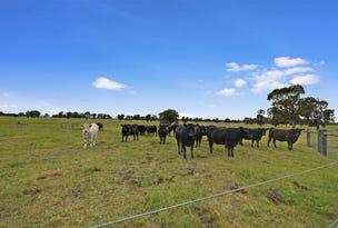 296 Cowwarr -Toongabbie Road, Toongabbie, Vic 3856