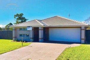 16 Tapir Street, Morisset Park, NSW 2264