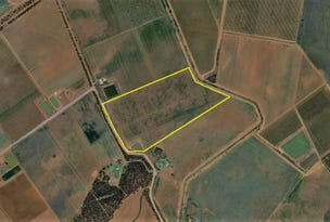 Farm 476 West Road, Nericon, NSW 2680