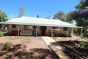 661 Mackintosh Road, Cadell, SA 5321