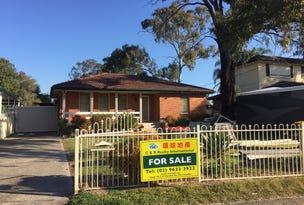 31 parkes Crescent, Blackett, NSW 2770