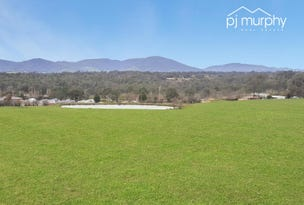 98 Twist Creek Road, Yackandandah, Vic 3749