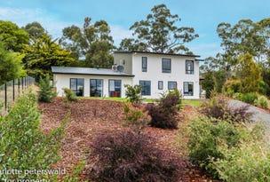 14 Eelmat Court, Coningham, Tas 7054