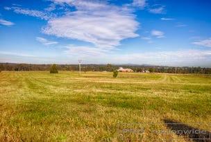Lot 1 - 97 Elderslie Rd, Branxton, NSW 2335