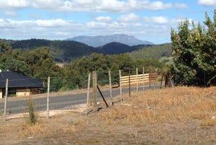 49 Roope Road, Lower Barrington, Tas 7306