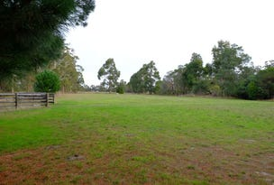 190 Barkhill Road, Forge Creek, Vic 3875