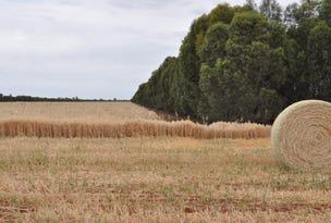 "1 ""Wallaroi West"", Condobolin, NSW 2877"