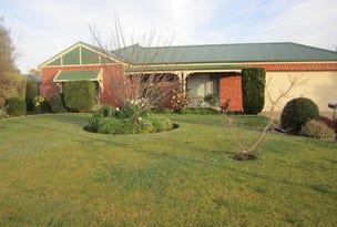 20 Winnima Avenue, Moama, NSW 2731