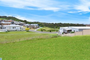 Lot 509 Whimbrel Avenue, Lake Heights, NSW 2502