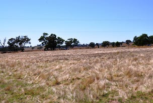 11 Cunninghams Lane, Gulgong, NSW 2852
