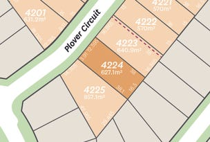 Lot 4224 Plover Circuit, Aberglasslyn, NSW 2320