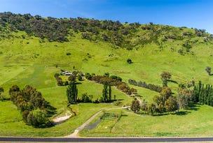1223 Munderoo-Ournie Rd Ournie via, Tumbarumba, NSW 2653