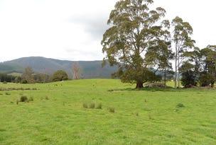 . MacKenzie Valley Road & Capples Road, Cuckoo, Tas 7260