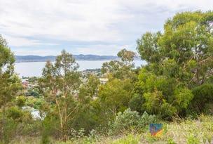 26 Enterprise Road, Sandy Bay, Tas 7005