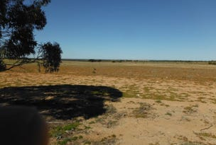 Lot 2815 Comerford Road, Mukinbudin, WA 6479
