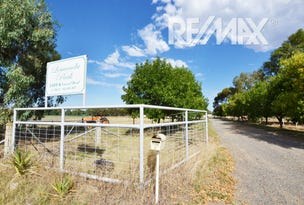 Lot 6 Vincent Road, Lake Albert, NSW 2650