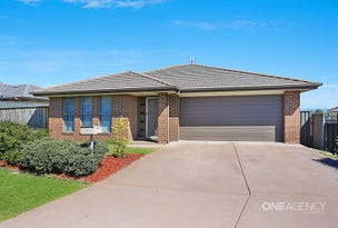 1 McGrogan Avenue, Singleton, NSW 2330
