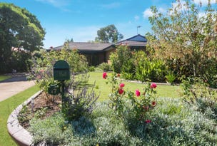 17 Cook Street, Scone, NSW 2337