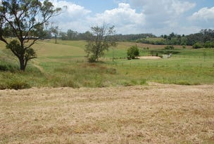 Lot 13, 13  Strawberry Road, Warrell Creek, NSW 2447