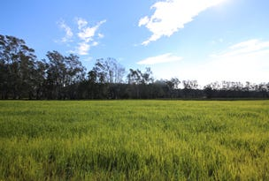 Proposed Lot 2 Byrons Lane, Tyndale, NSW 2460