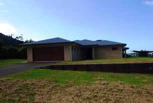 240 Harvey Creek Road, Bellenden Ker, Qld 4871