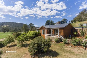 64 Judds Creek Road, Judbury, Tas 7109