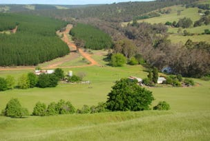 Kangaroo Gully, address available on request