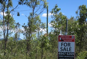 LOT 55 CARLISLE CRESCENT, Bloomsbury, Qld 4799