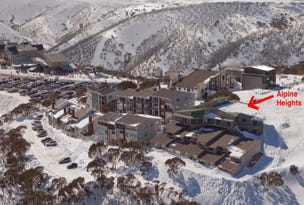 ALPINE HEIGHTS/28 Lawlers Court, Mount Hotham, Vic 3741
