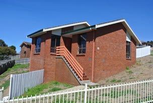 45 Wright Street, Shorewell Park, Tas 7320