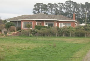 379 Railton Road, Moltema, Tas 7304
